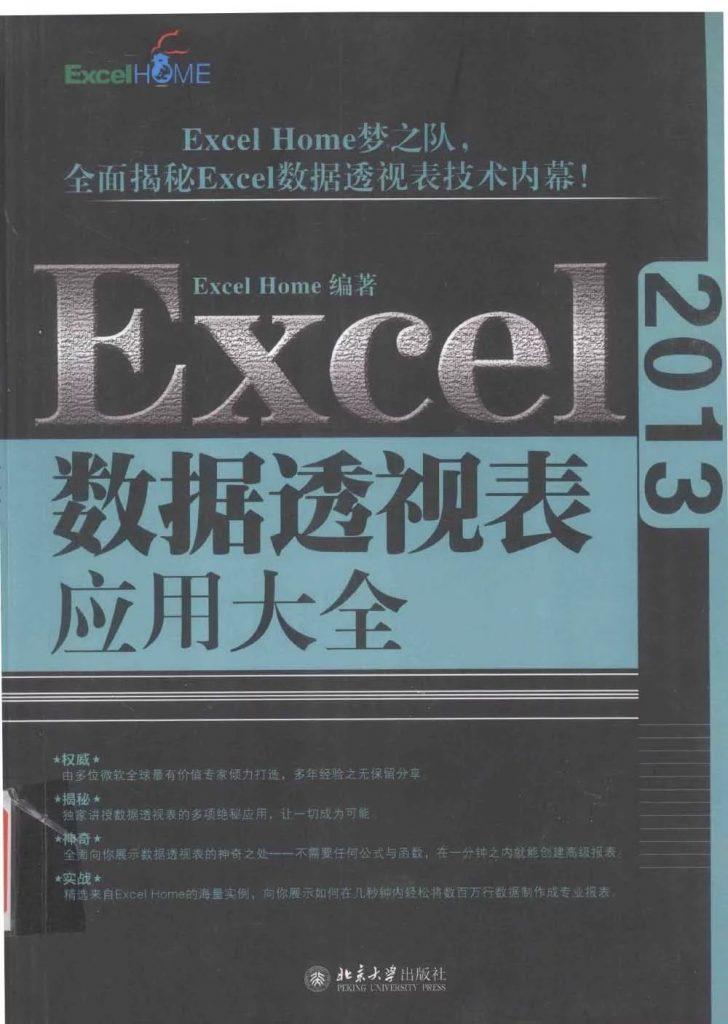 Excel 2013数据透视表应用大全  PDF
